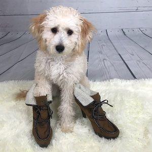 Shoes - Brown Boot Heel